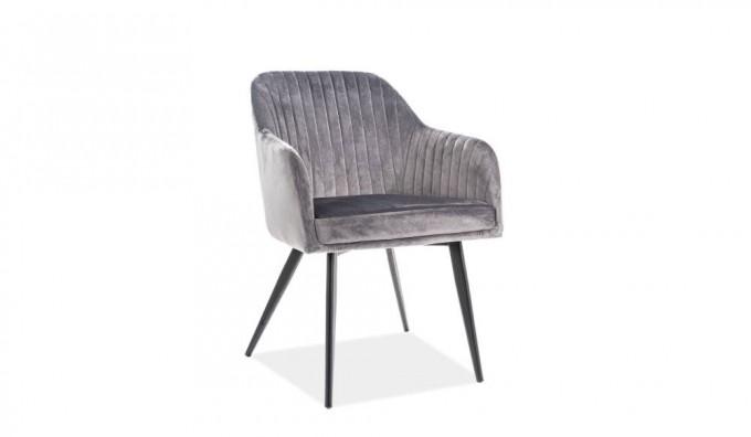 Tanzo Velvet Dining Chair (Set of 2)